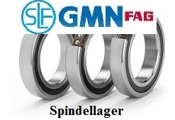 Spindellager Shop