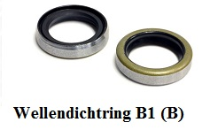 Wellendichtring B1 (B)