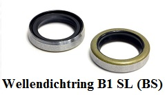 Wellendichtring B1 SL (BS)